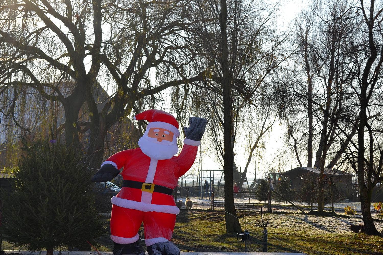 Nordmann Excellent kerstbomen Heemstede