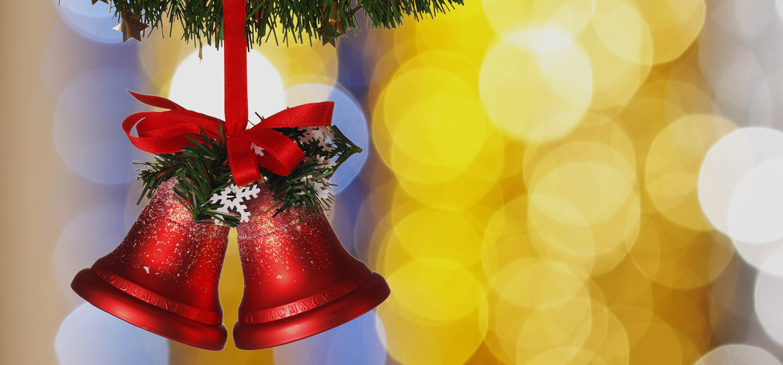 Veelgestelde vragen over Nordmann Excellent kerstbomen in Heemstede