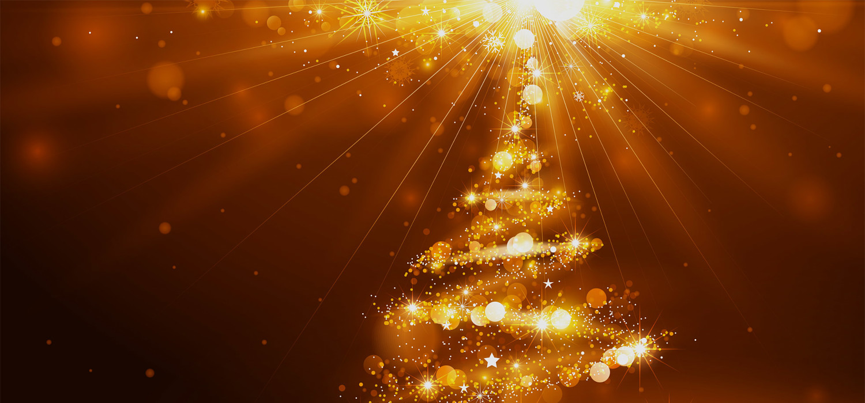 Kerstbomen voor bedrijven in Heemstede
